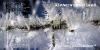 winterwunderland-bmbx.jpg