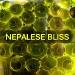 traptrack_-_nepalese_bliss_cover.jpg