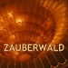 traptrack_-_zauberwald_cover.jpg